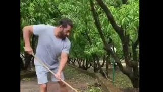 Being Human, Salman Khan comes in support of mother nature | Checkout his heart touching gesture | - TELLYCHAKKAR