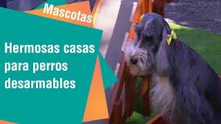 Hermosas casas para perros desarmables | mascotas