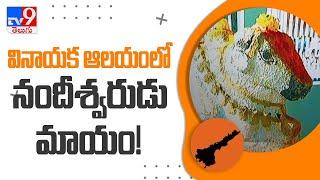 వినాయక ఆలయంలో నందీశ్వరుడు మాయం!    Guntur - TV9 - TV9