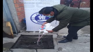 Importante decomiso de bebidas adulteradas en El Alto, proceden al deshecho
