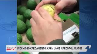 Los 'narcoaguacates', la insólita manera de llevar cocaína al exterior