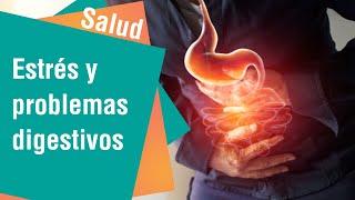 ¿Cómo afecta el estrés al sistema digestivo | Salud