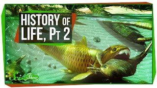 A Brief History of Life, Part 2: The Paleozoic