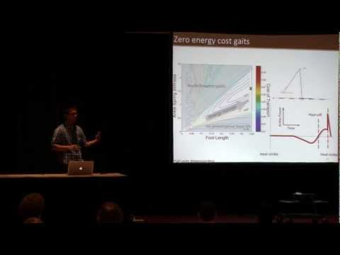 Modeling Benefits of Ankle Elasticity in Walking