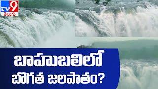 Bogatha Waterfalls  : బోగత జలపాతం అందం చూడతరయా ! - TV9 - TV9