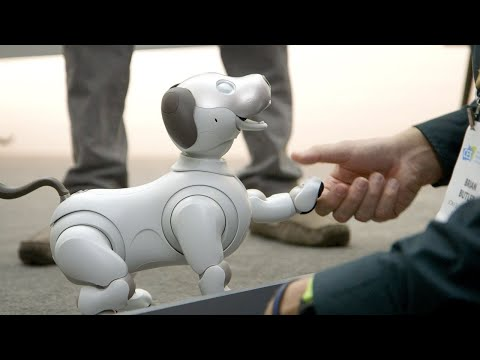 connectYoutube - Sony's new Aibo is a very good robot dog