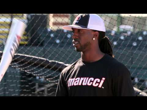 Marucci CAT 6 Baseball Bat