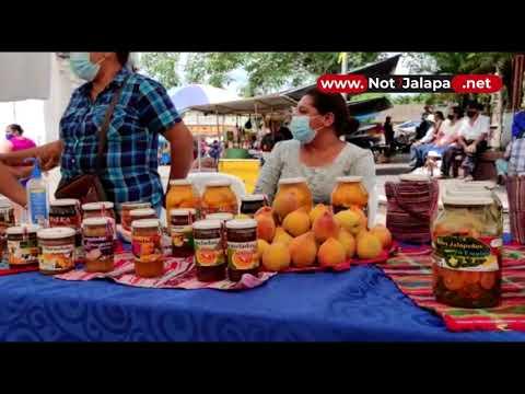 Realizan Feria De Emprendedores En San Pedro Pinula 1