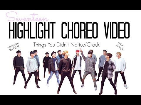 Seventeen Highlight Choreography Video Things You Didn't Notice/Fangirl ver./Crack