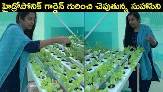 Actress Suhasini About Hydroponic Garden In Her Home | Suhasini Hassan | Rajshri Telugu - RAJSHRITELUGU