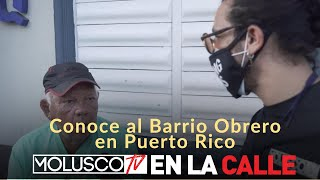 """BARRIO OBRERO """"Arecibo"""" PASAN EL COVID19 BEBIENDO CERVEZA.. #ElEnmascarado Entrevista AL PUEBLO ????????"""