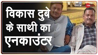 Hamirpur में STF से मुठभेड़ मे मारा गया Vikas Dubey गैंग का शातिर अपराधी Amar Dubey - ZEENEWS