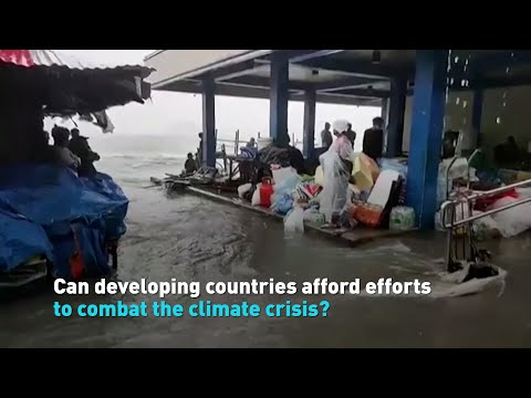 Can developing countries afford efforts to combat climate change