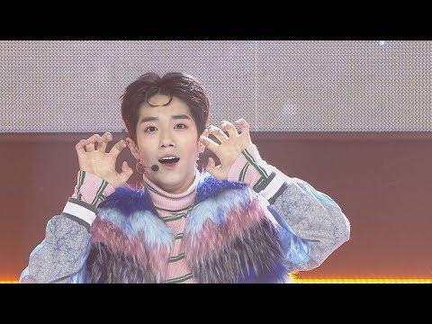 connectYoutube - Show Champion EP.255 TRCNG - WOLF BABY [티알씨엔지 – 울프 베이비]
