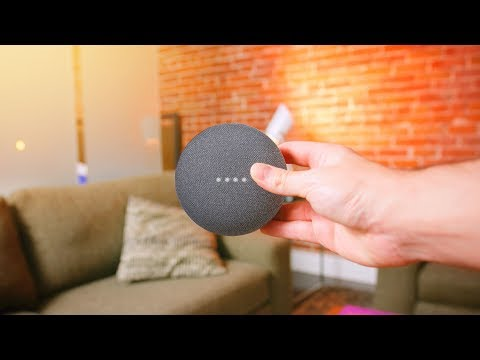Google Home Mini - 48 Hours Later!