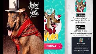 """""""Los amigos de Yuki"""" una aplicación para ayudar a las mascotas"""