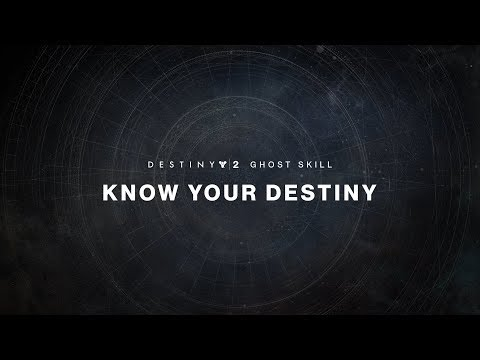Destiny 2 Ghost Skill - What's Next?