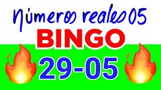 NÚMEROS PARA HOY 03/12/20 DE DICIEMBRE PARA TODAS LAS LOTERÍAS...!! Números reales 05 para hoy...!!