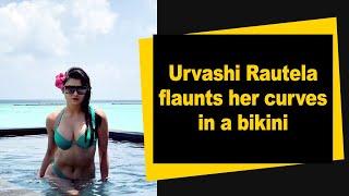 Urvashi Rautela flaunts her curves in a bikini - IANSINDIA