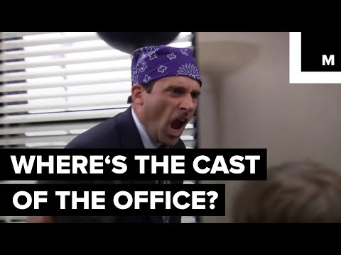 What Is The Cast Of 'The Office' Doing Now?