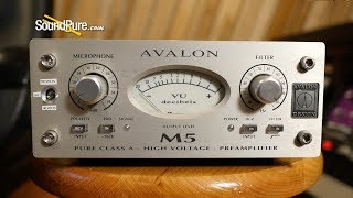 Avalon M5 Single Channel Solid State Mic Preamp Quick n' Dirty
