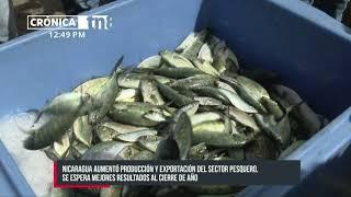 Industria de pesca en Nicaragua en crecimiento y se fortalece la acuicultura