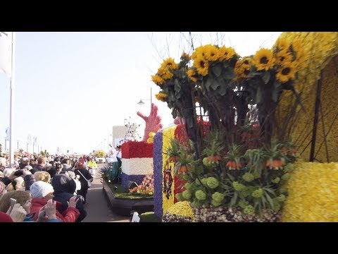 Bloemencorso 2019 | Holland photo