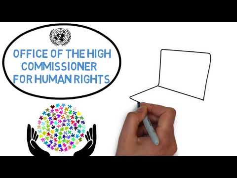 13. Access to justice at the global level