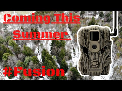 stealth camera New Fusion Cell cam Talk 2020
