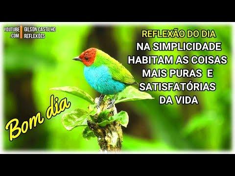 Mensagem de Bom Dia /Na Simplicidade Habitam as Coisas Mais Puras e Satisfatórias da Vida