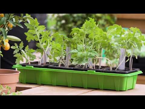 Gröna tips för din balkong