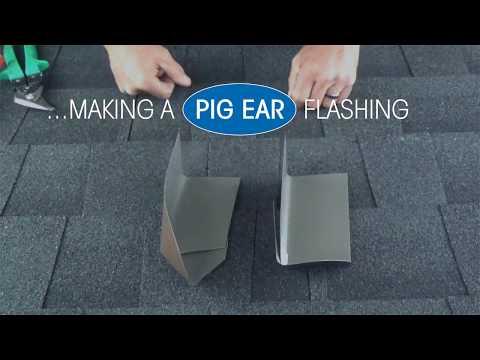 Care Cuts - Pig Ear