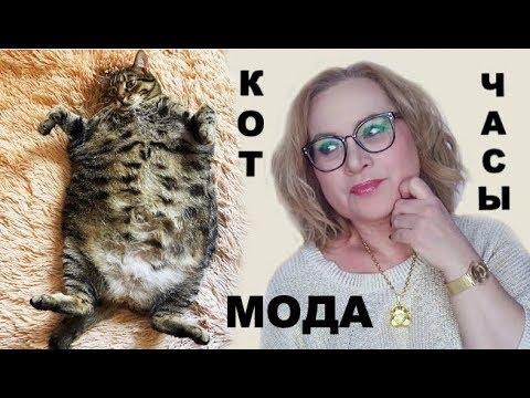 Кот, новые часы Swatch, модные образы на весну — Vlog
