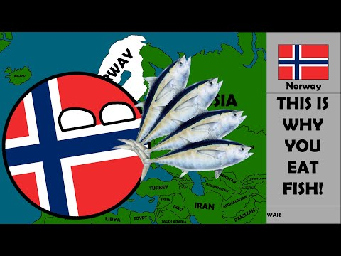 Norway in a Nutshell (Do you like Fish?)