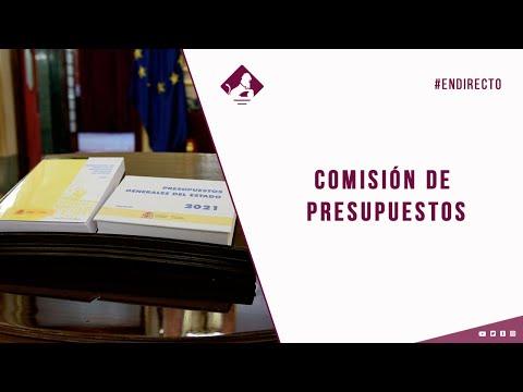 Comisión de Presupuestos (05/11/2020)