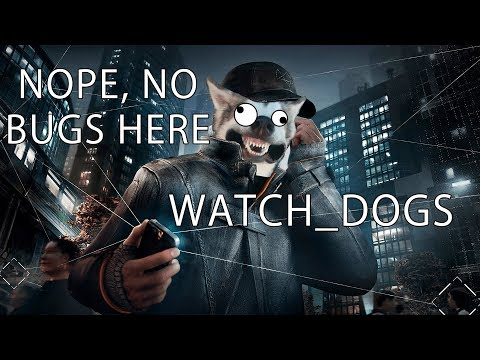 Watch Dogs is a functional and bug-free game