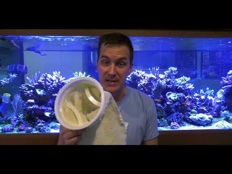 Check This When Running Filter Socks: Mr. Saltwater Tank Friday AM Quick Tip