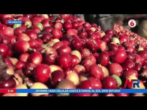 Actividades en celebración del día nacional del café