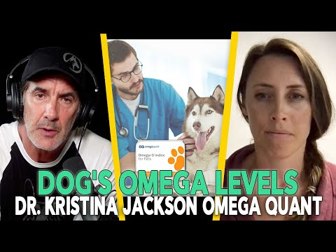 The Health Benefits of Fish Oil For Dogs - Episode 88