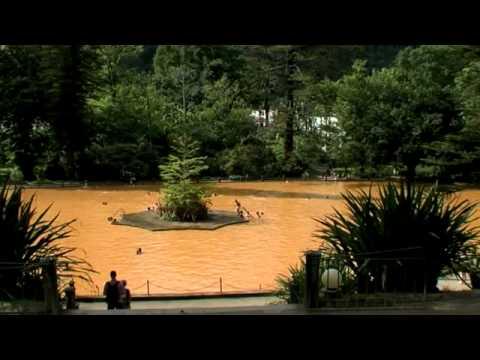 Bensaude Turismo - Terra Nostra Garden Hotel