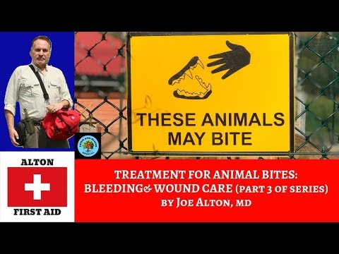 Animal Bites: Treatment and Wound Care (Part 3 of Series)