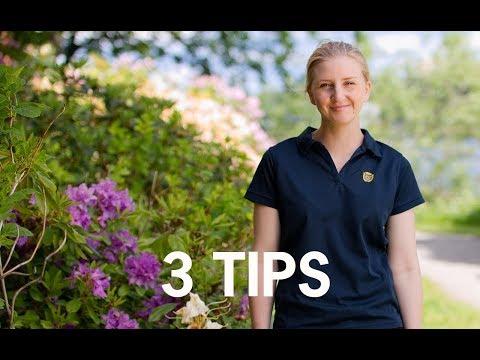 3 snabba tips för en härligare utemiljö