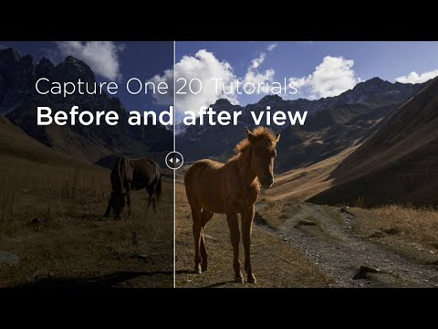 Capture One 20 Tutorials | Before and after view