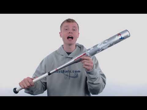 2018 DeMarini Flipper USA ASA Slow Pitch Softball Bat: WTDXFLA