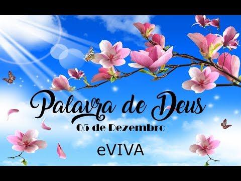 PALAVRA DE DEUS PARA HOJE 05 DE DEZEMBRO eVIVA MENSAGEM MOTIVACIONAL PARA REFLEXÃO DE VIDA