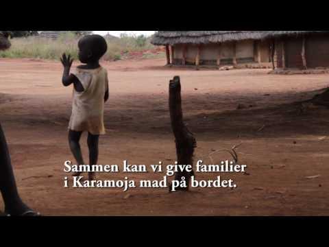 Tørke: børn i fare for at dø af sult