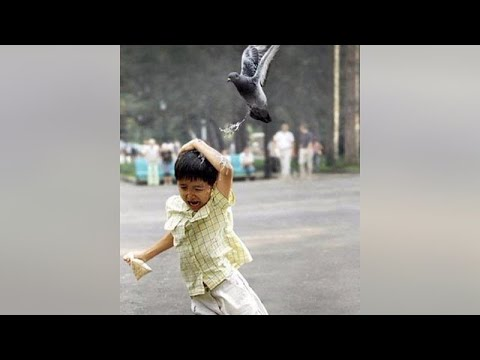 These are THE BEST FAILS EVER! - You'll LAUGH all day long :)