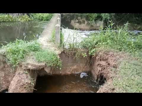 ฝายน้ำล้นจะพังแล้ววอนผู้เกี่ยว