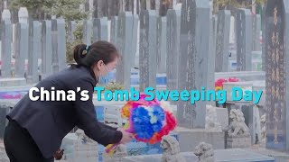 China's Tomb Sweeping Day