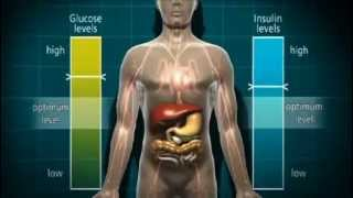 What is diabetes and types of diabetes